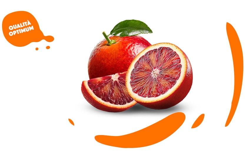 Arancia-rossa-qualita-optimum