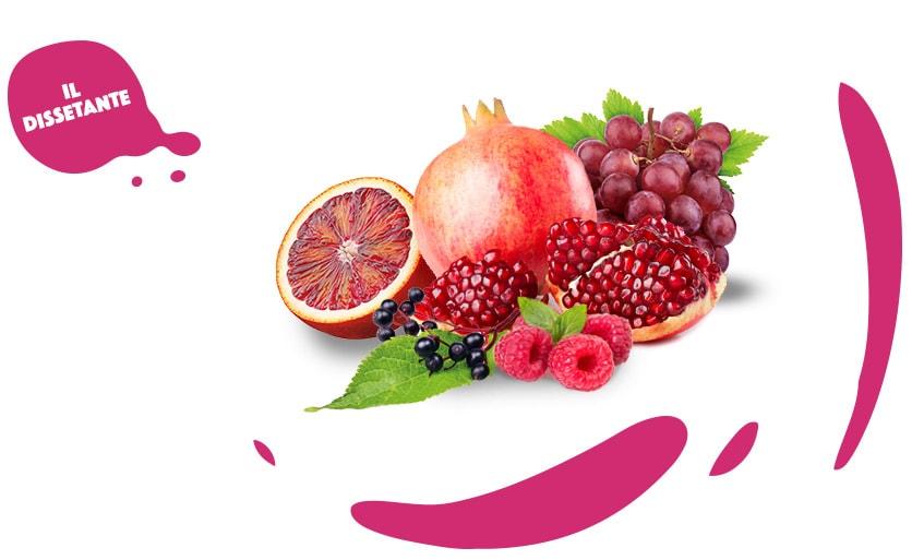 Mix-frutti-rossi-il-dissetante